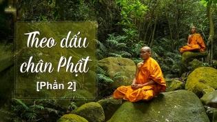 Tại sao chư Tăng chùa Ba Vàng tu trong rừng? | Theo dấu chân Phật